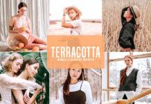 Free Terracotta Lightroom Presets