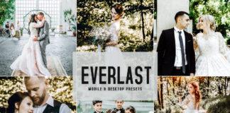 Free Everlast Mobile & Desktop Lightroom Presets
