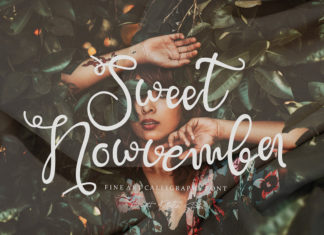 Free Sweet Nowvember Script Font