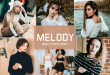 Free Melody Lightroom Presets