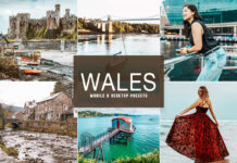 Free Wales Lightroom Presets