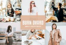 Free Burn Ovard Lightroom Presets