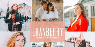 Free Cranberry Lightroom Presets