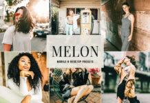 Free Melon Lightroom Presets