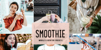 Free Smoothie Lightroom Presets