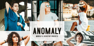 Free Anomaly Lightroom Presets