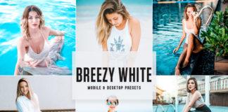 Free Breezy White Lightroom Presets