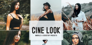 Free Cine Look Lightroom Presets
