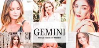 Free Gemini Lightroom Presets