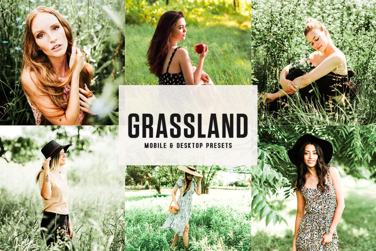 Free Grassland Lightroom Presets