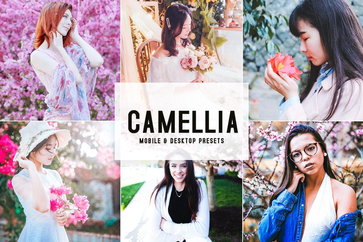 Free Camellia Lightroom Presets