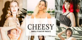 Free Cheesy Lightroom Presets