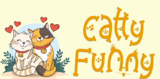 Catty Funny Display Font
