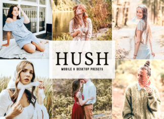 Hush Lightroom Presets