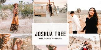 Joshua Tree Lightroom Presets
