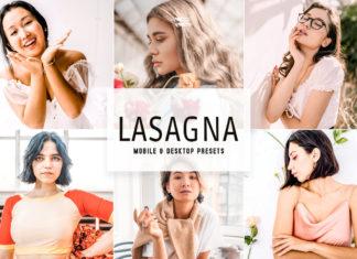 Lasagna Lightroom Presets
