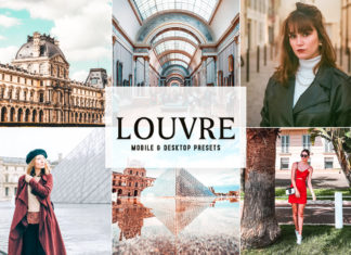 Louvre Lightroom Presets