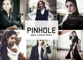 Pinhole Lightroom Presets