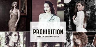 Prohibition Lightroom Presets