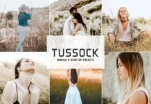 Tussock Lightroom Presets
